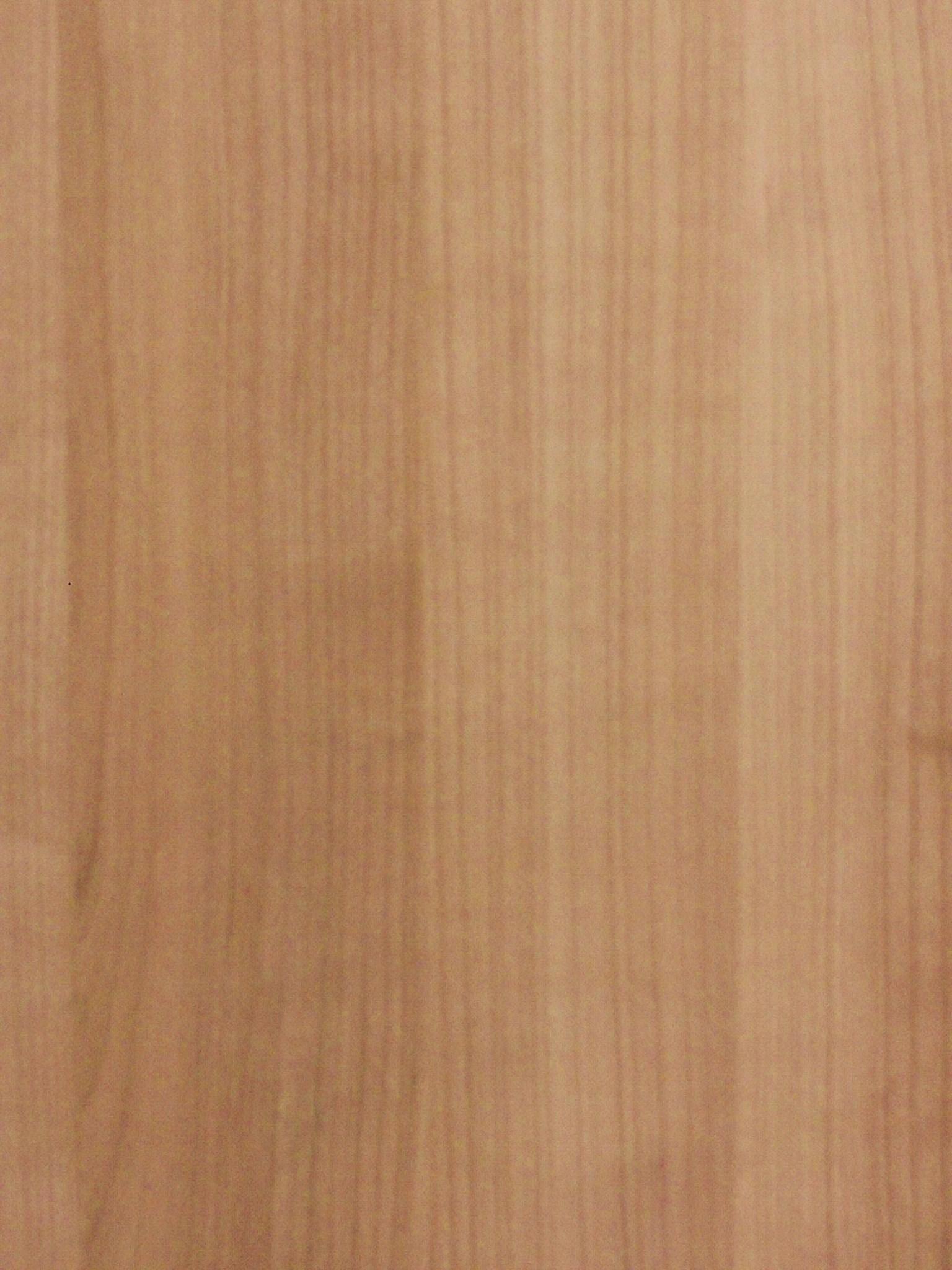 Rüster Holz forst und holz dienstleistungen rüster